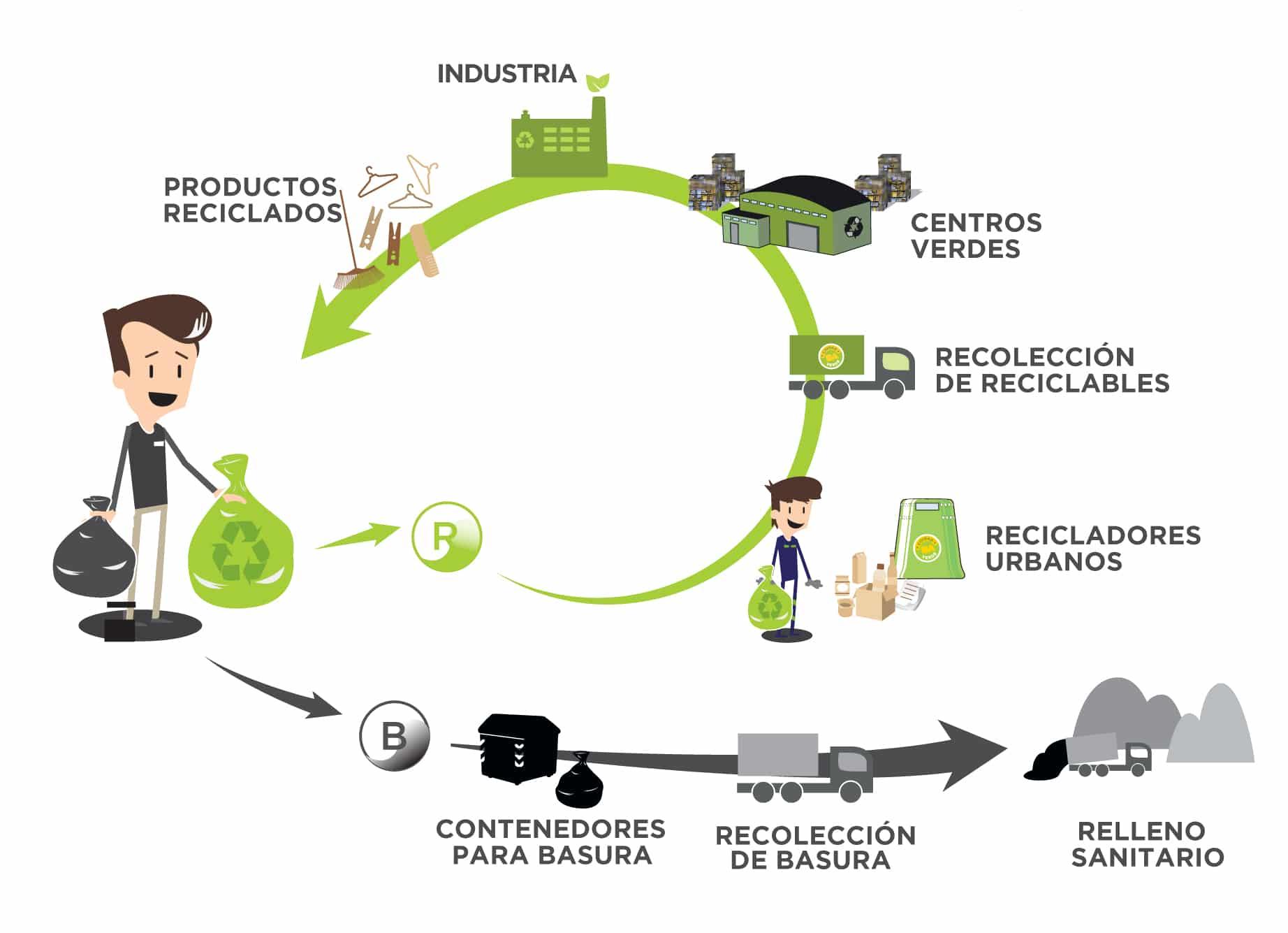 Ideas de negocios verdes para emprender. II Parte