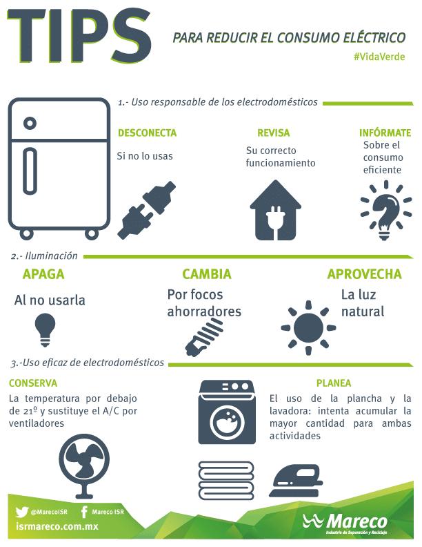 Proyectos ecológicos ¡35 ideas para emprender! I Parte