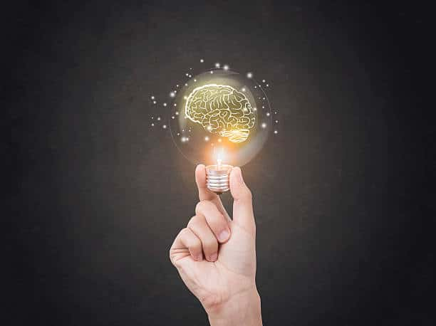Negocios Innovadores ¡El verdadero camino al éxito!